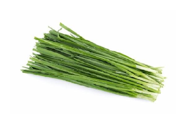 خرید بذر تره