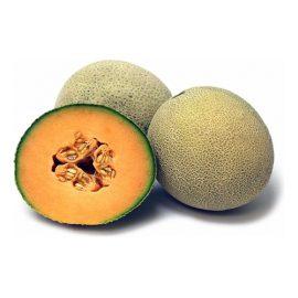 فروش بذر خربزه آناناسی