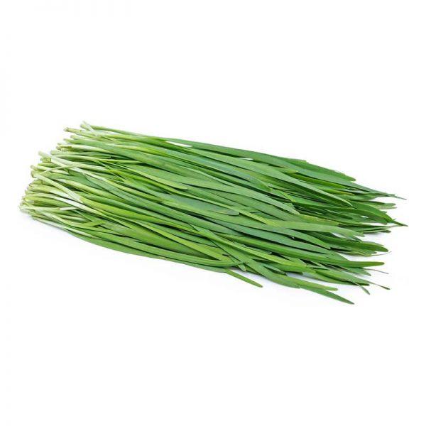 فروش بذر تره