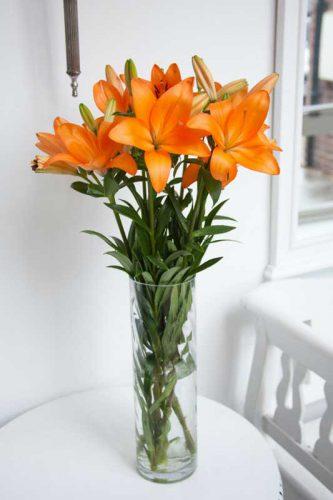 عقیم کردن گل لیلیوم جهت افزایش عمر شاخه بریده