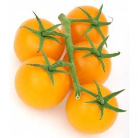 گوجه گیلاسی زرد