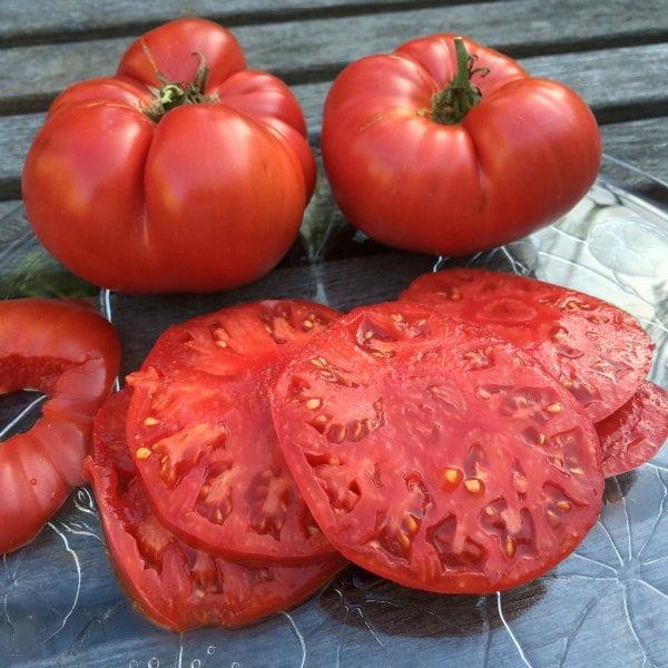 گوجه فرنگی نیم کیلویی