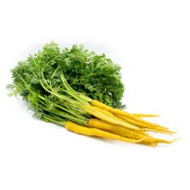 هویج زرد