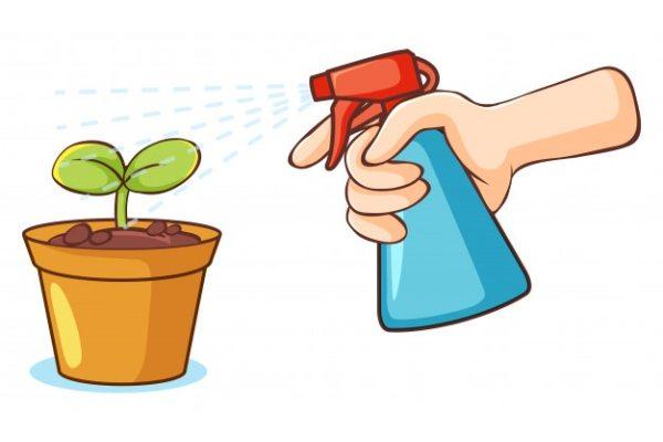 میزان و نحوه مصرف کود کامل گرین