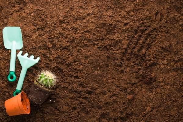 ترکیبات و مواد تشکیل دهنده خاک کاکتوس بهکام