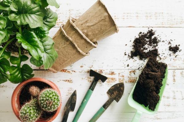 دستورالعمل استفاده از خاک کاکتوس بهکام