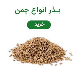 فروش بذر انواع چمن