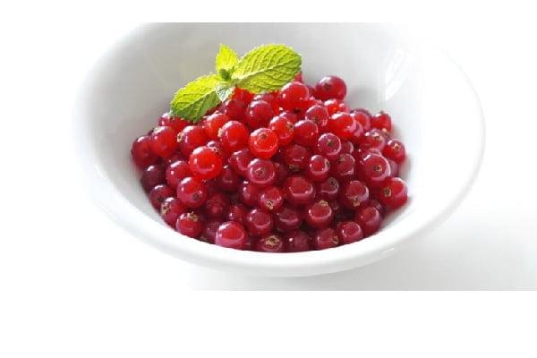 بذر ردکارنت انگور فرنگی قرمز