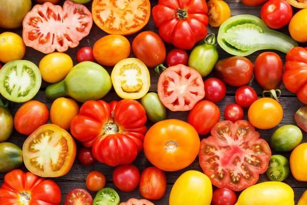 خرید بذر گوجه فرنگی