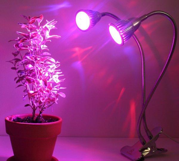 تستفاده از لامپ رشد برای گیاه