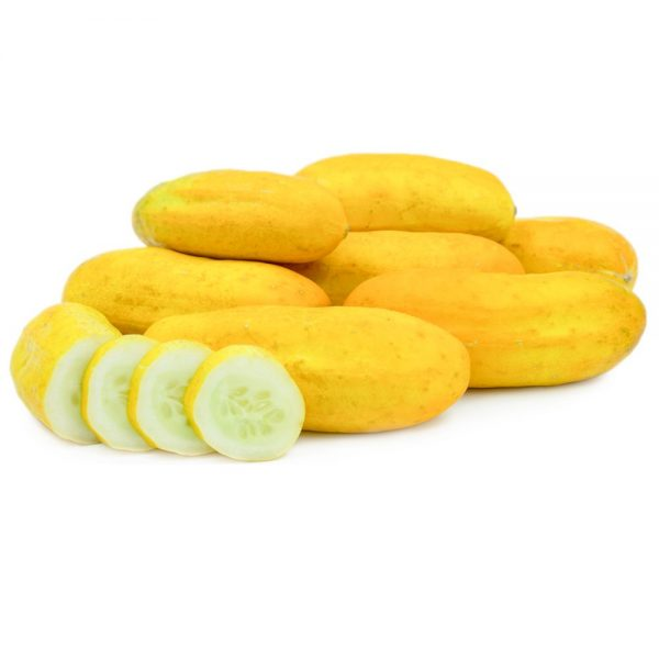 بذر خیار زرد