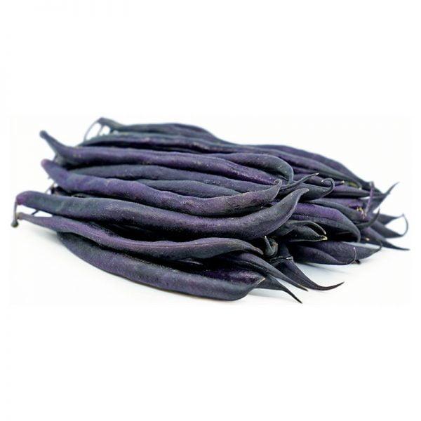 خرید بذر لوبیا سیاه